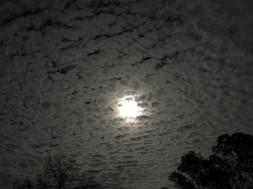 Moon (1)
